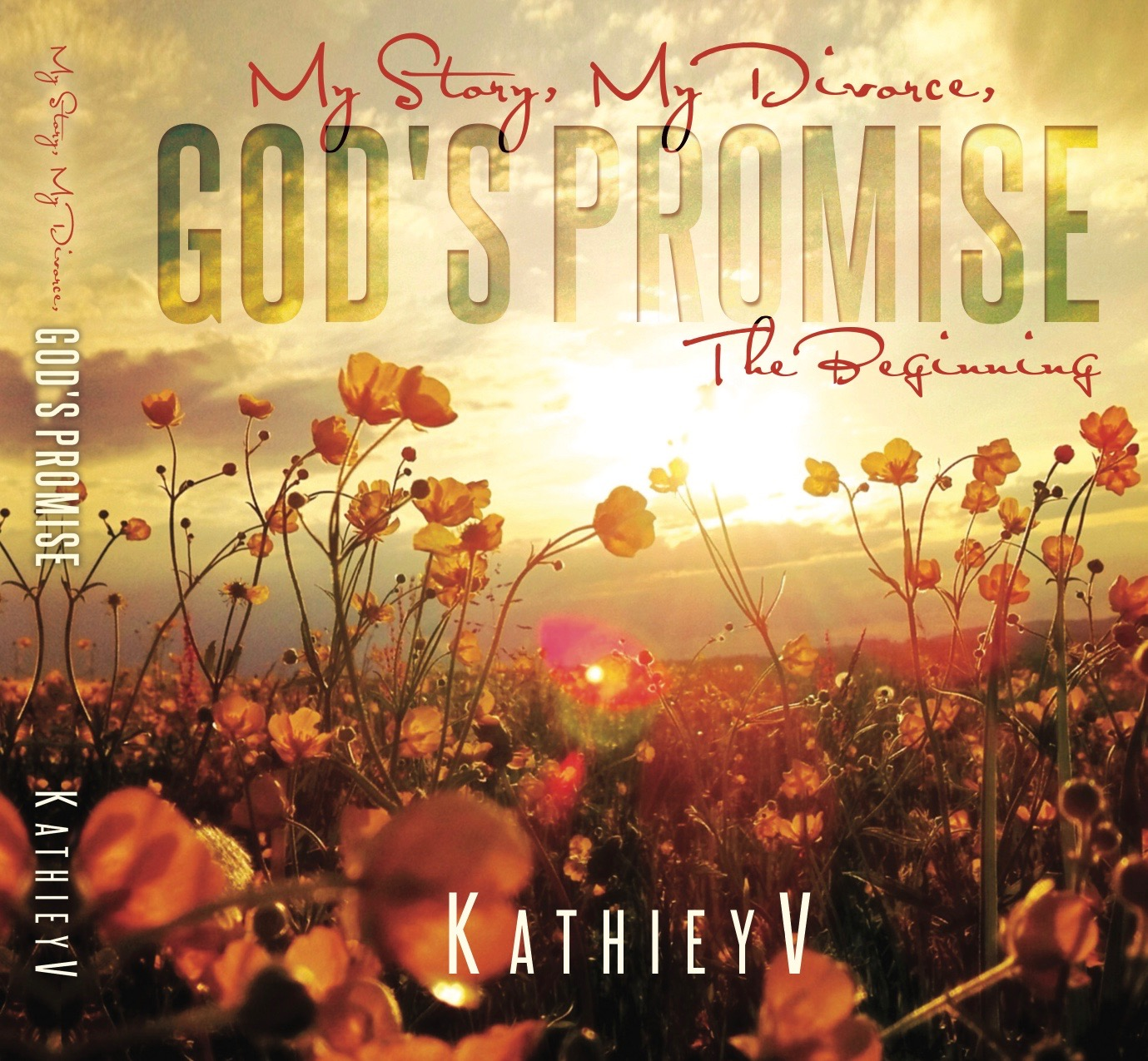 My Story My Divorce God's Promise, The Beginning