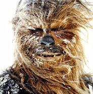 """""""Chewbacca"""""""