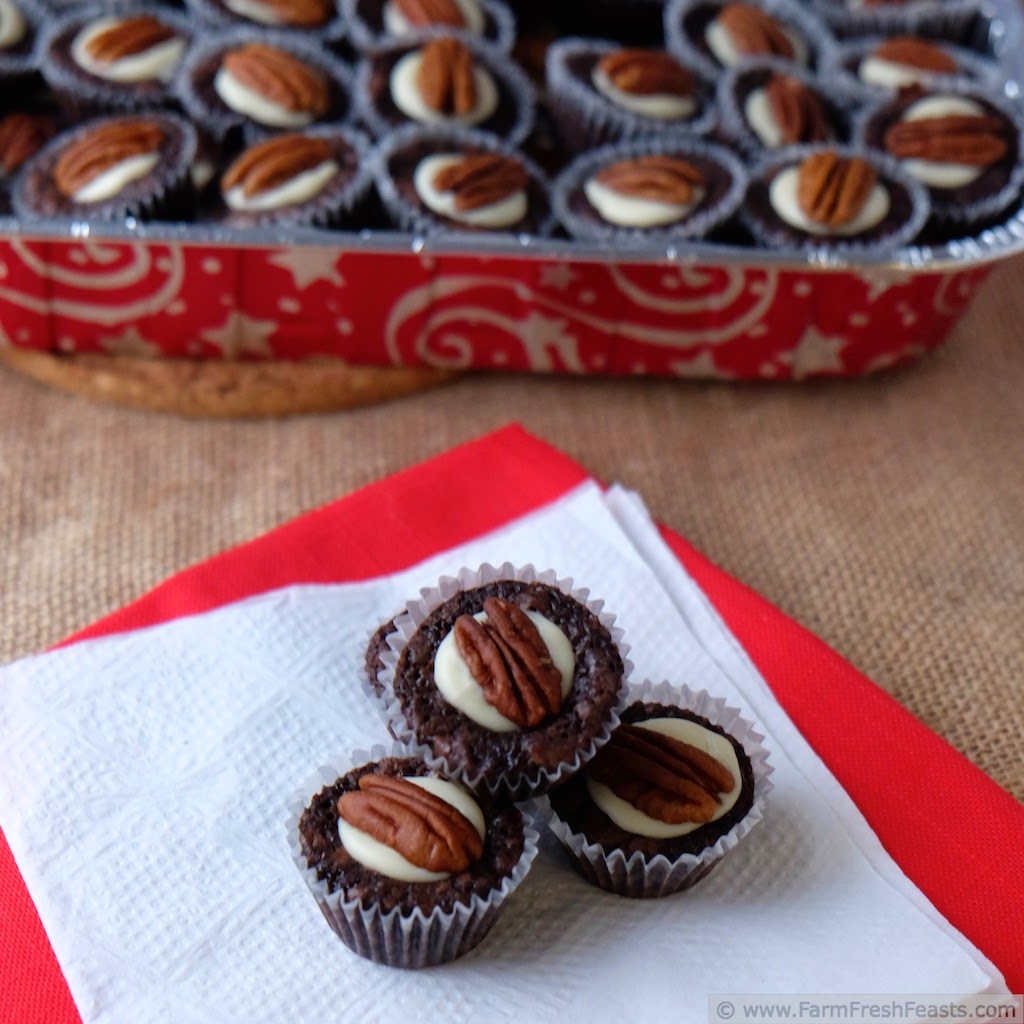 http://www.farmfreshfeasts.com/2014/12/pecan-brownie-bites-for-cookie-drive.html