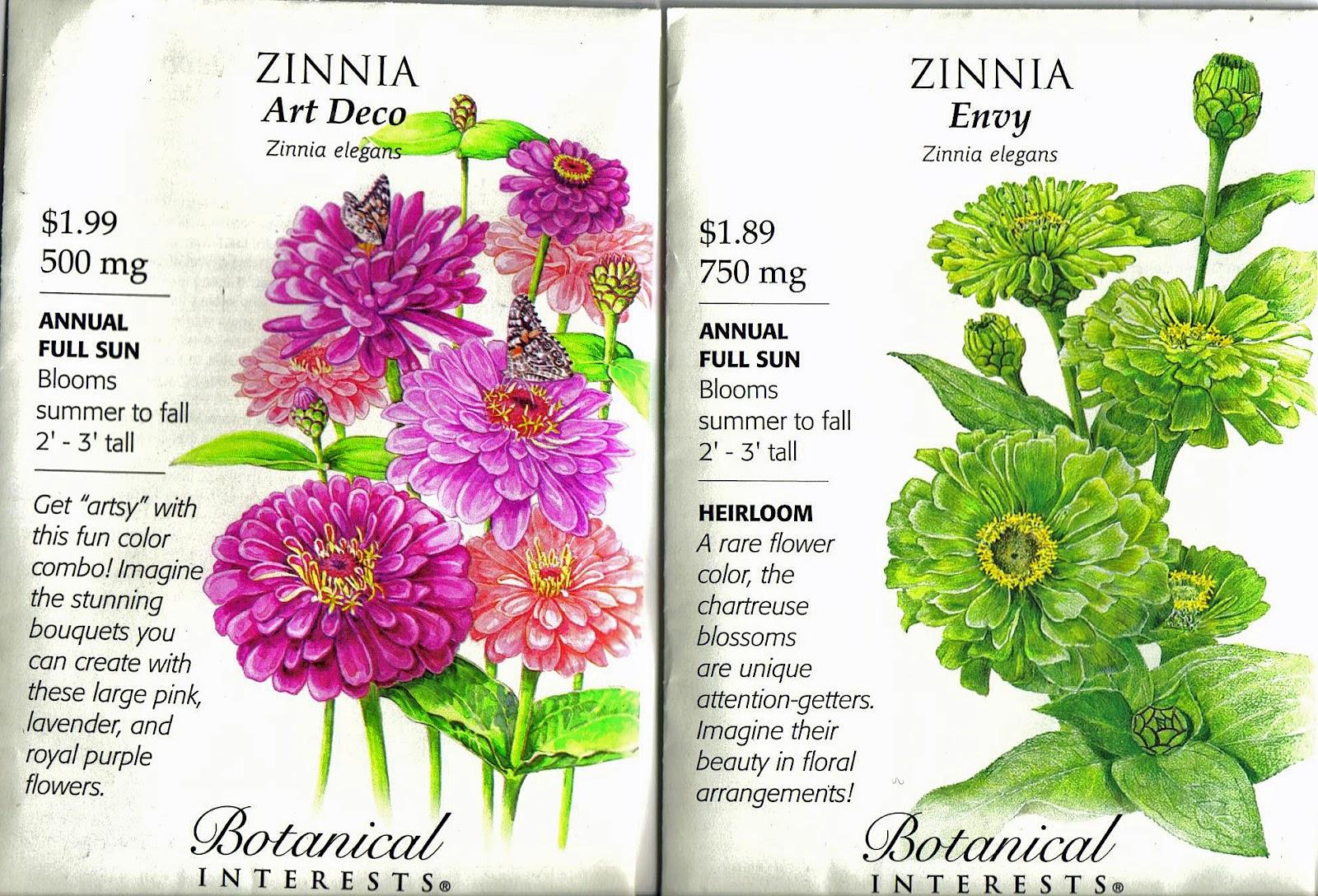 Deborah Jeans Dandelion House And Garden Cut Flower Focus Zinnia