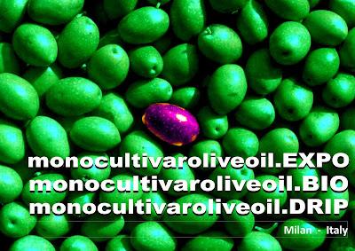 http://www.monocultivaroliveoil.com/concorsi/
