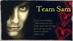 Team Sam - Heven and Hell Series