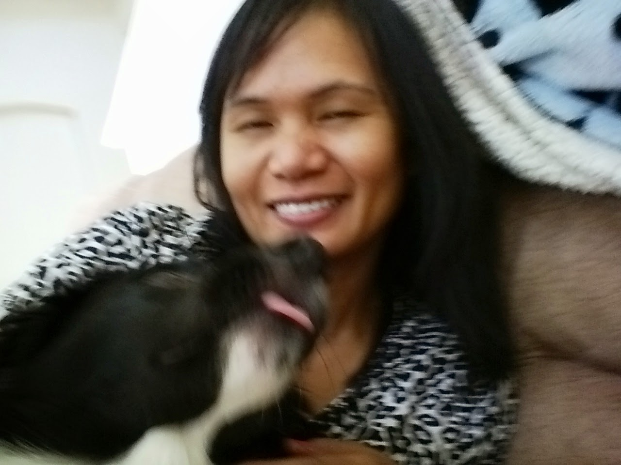 Carin Nurse blogger border collie dog kiss