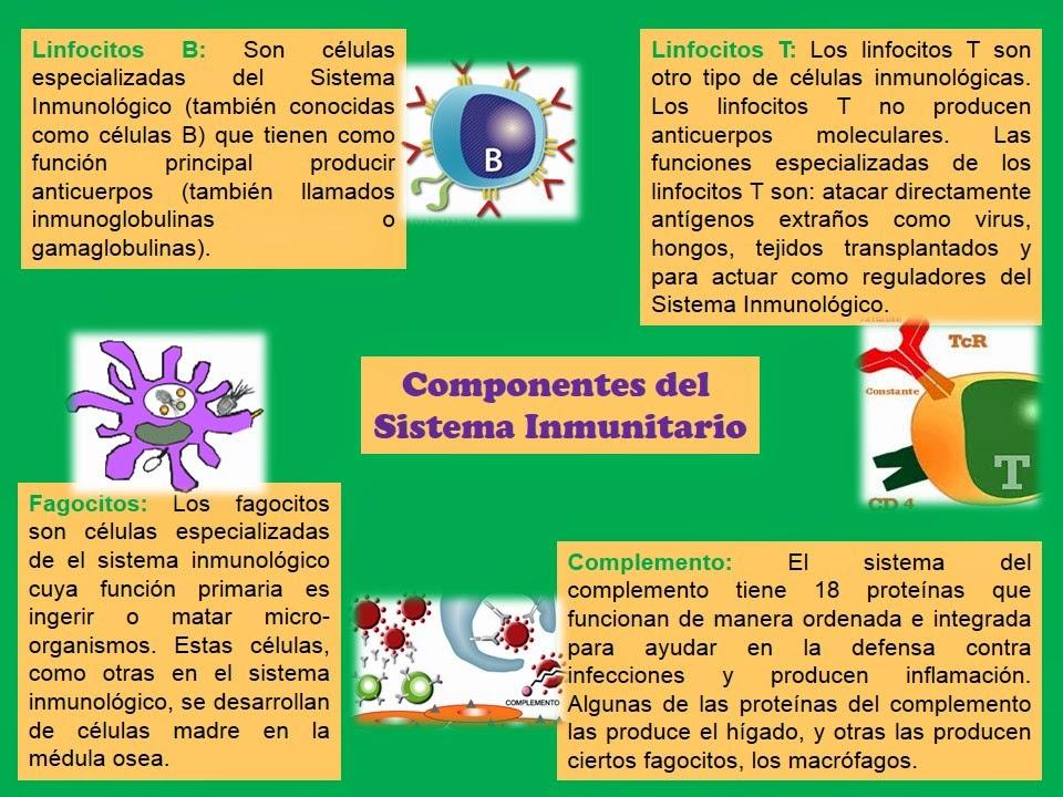 Epidemiología e Inmunología : octubre 2014