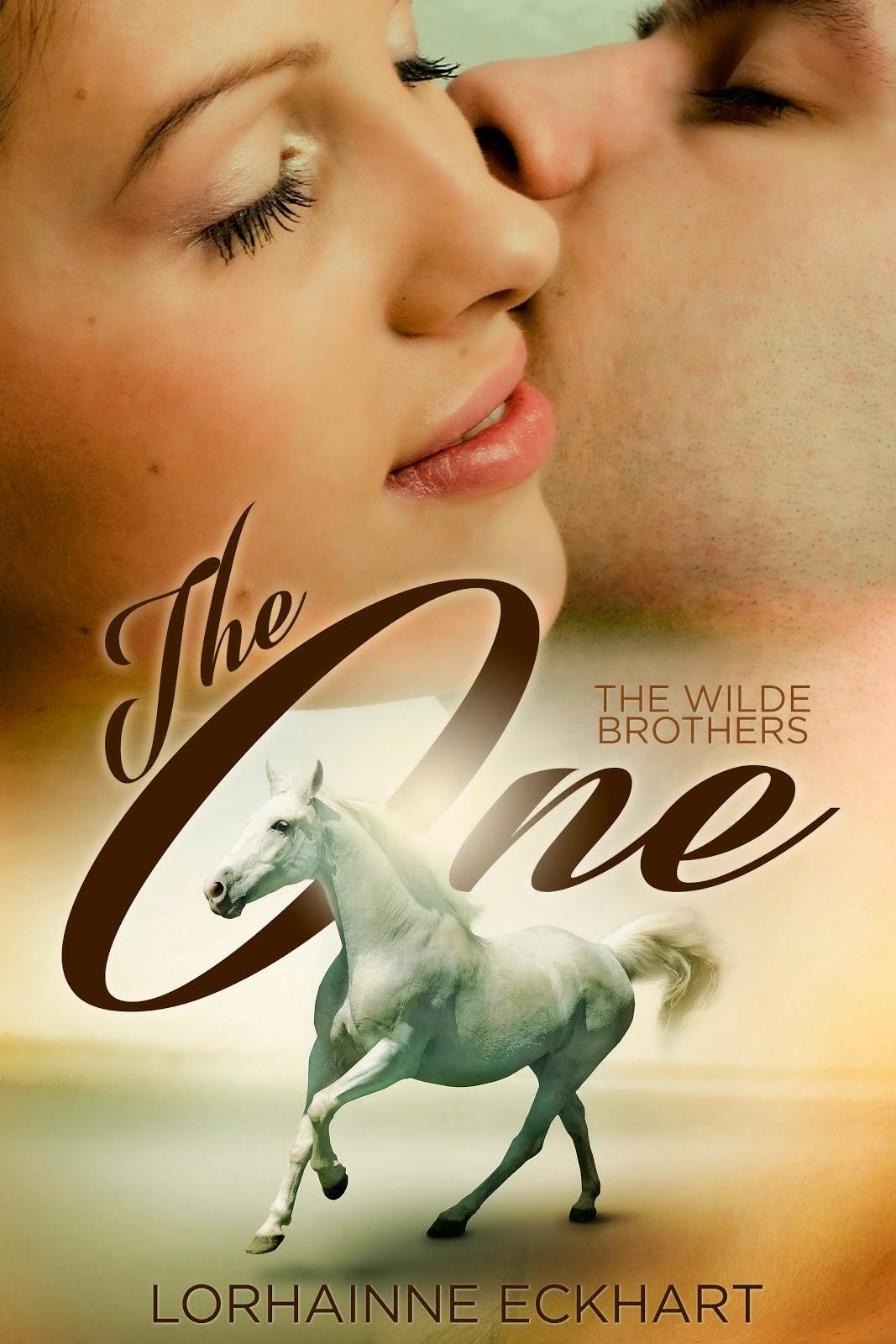 SERIES FEATURE ~ THE WILDE BROTHERS: The One, Book 1