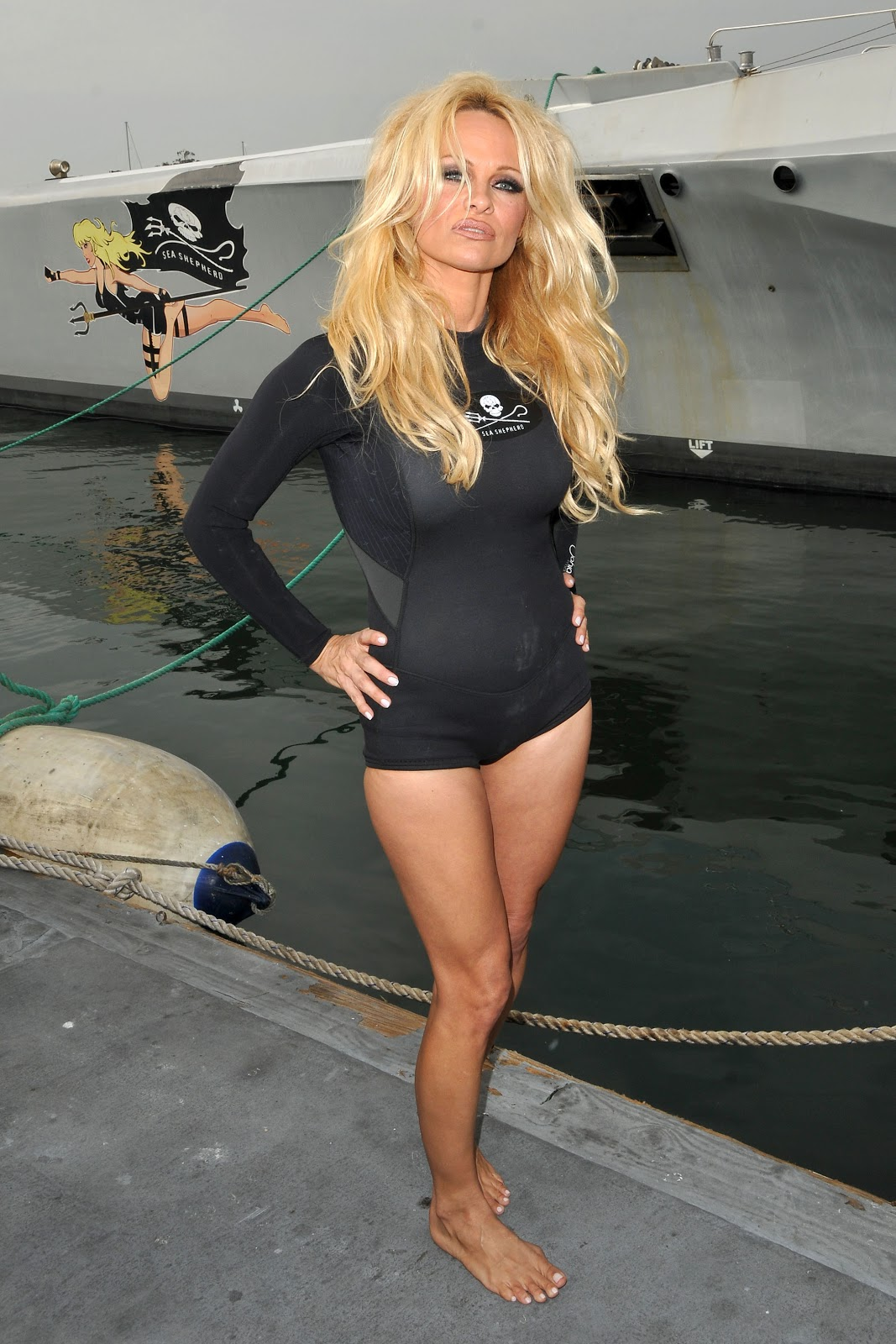 pamela anderson black wetsuit just fab celebs. Black Bedroom Furniture Sets. Home Design Ideas