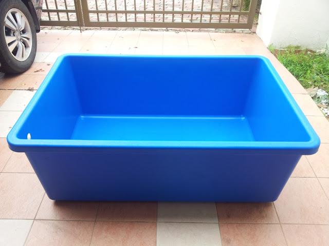 Affnan S Aquaponics Guppy Tank
