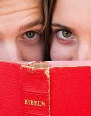 Om bibelsidan