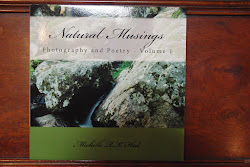 My First Book! Natural Musings