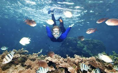 mulher-mergulha-mar.jpg (495×309)