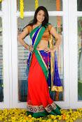 Santoshi sharma half saree pics-thumbnail-1