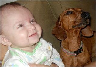Perros y bebes :)