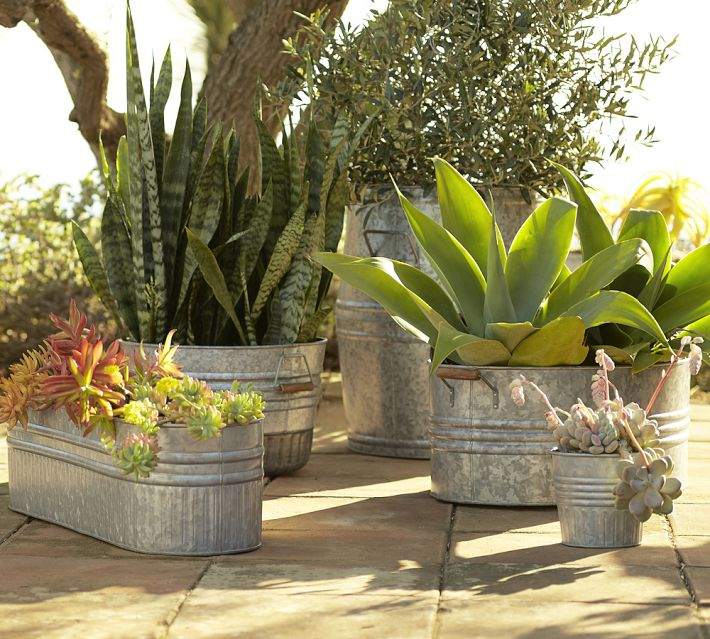 Galvanized metal tubs buckets pails as planters for Oversized garden tub