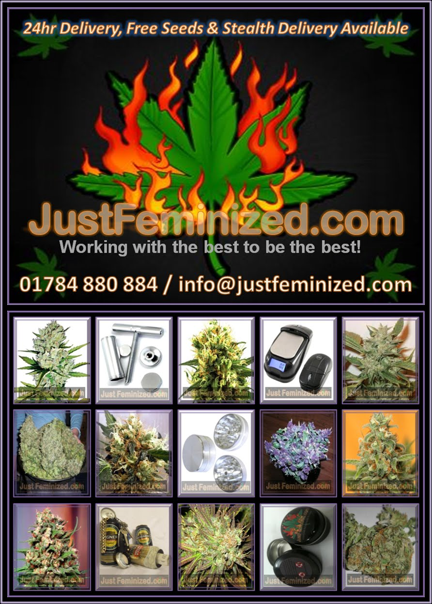 Just Feminized Seed Bank