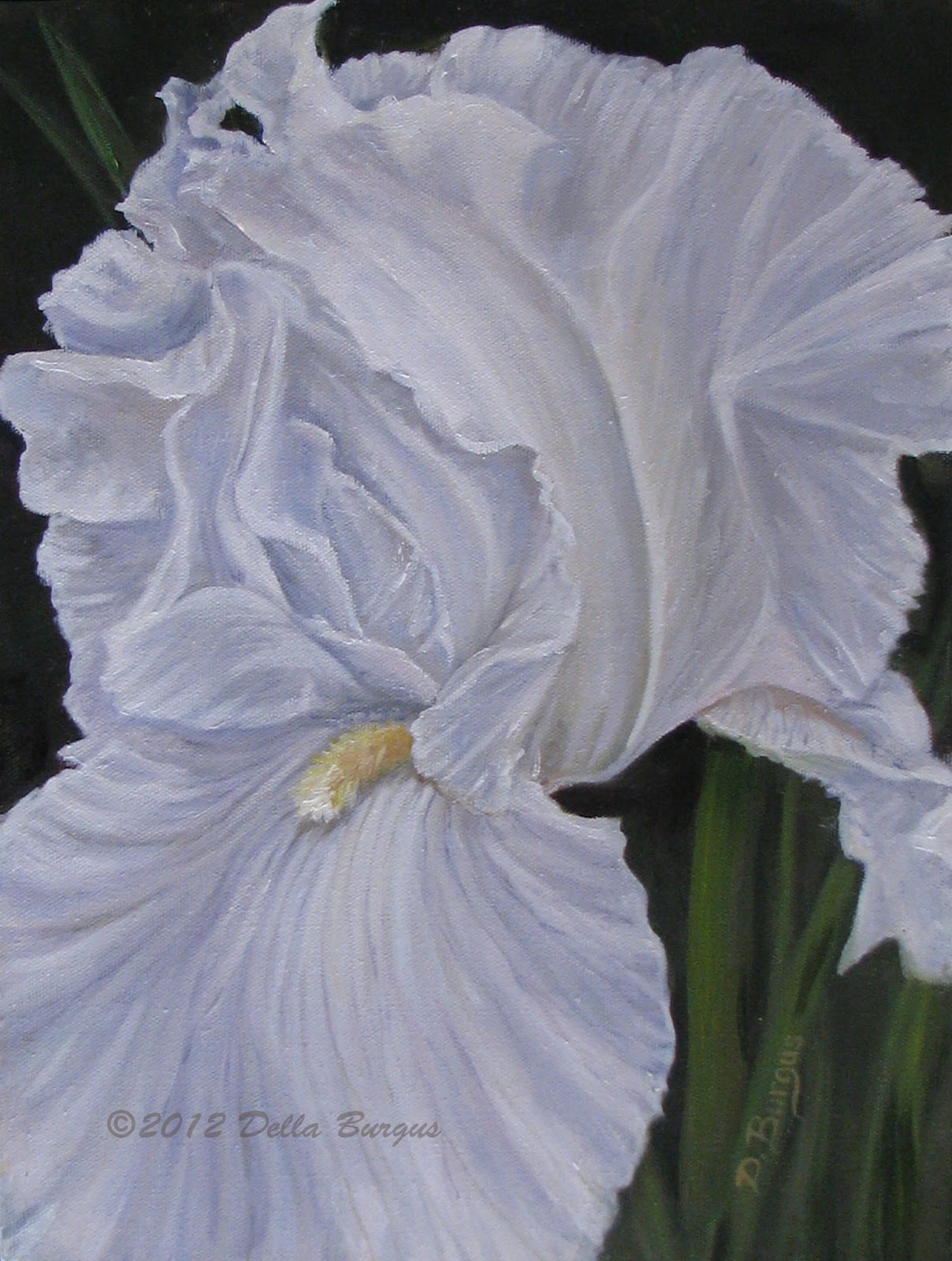 Art Helping Animals Floral Art Flowers White Iris Oil Painting by Della Burgus