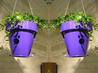 Casas Recicladas para Aves, Ideas Faciles para Reciclar