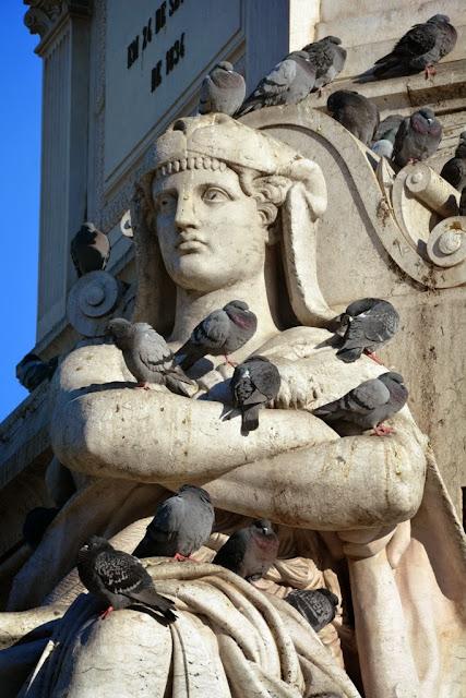 Rossio Square Lisbon Pigeons
