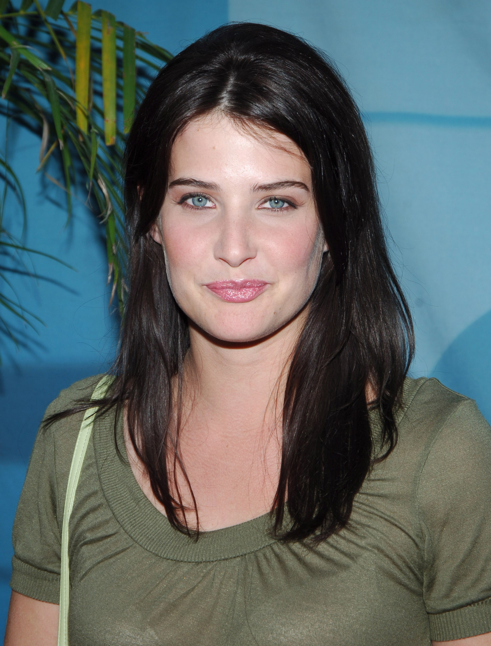 Cobie Smulders pictures gallery (42)   Film Actresses