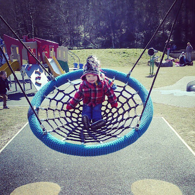spiderweb swing