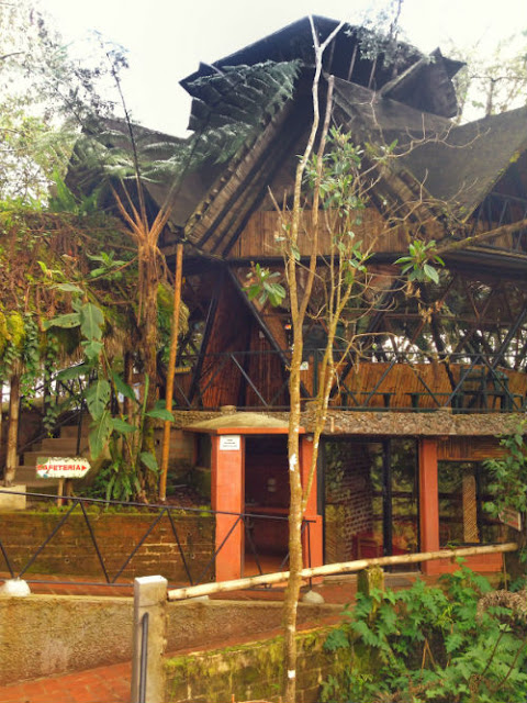 Staying at Bellavista Lodge in Mindo