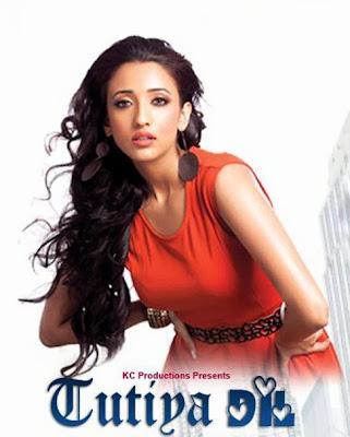 How To Free Download Tutiya Dil 2013 Full Hindi Movie 300mb Bluray