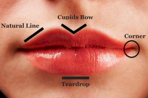 What Do Your Lips Say About Your Personality? The Results Are Surprisingly Accurate
