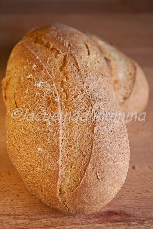 pane 100% semola di grano duro