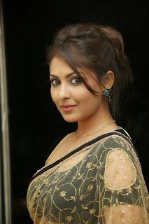 Actress Madhu Shalini Latest Pictures in Saree at Seethavalokanam Press Meet  044.jpg