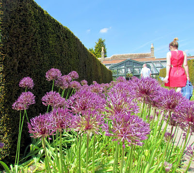 pink dress, sister, purple flowers, Wimpole estate, grounds, gardens, national trust, day drip, family outing, hedge, summer, visit
