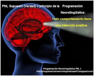 """Este supuesto  de la PNL Programación Neurolingüística nos dice que todo comportamiento tiene una intención positiva con respecto a la persona que exhibe dicho comportamiento: Cuando una persona actúa de forma inaceptable desde mi punto de vista, """"asumo"""" que tiene motivos razonables desde su punto de vista y exploro la situación desde dicho punto de vista –me pongo en sus zapatos-."""