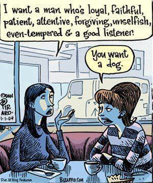 http://2.bp.blogspot.com/-X9KYoayF0oI/UAQmG2caZ6I/AAAAAAAAE_c/u4fRNH19GWU/s1600/man+or+dog.jpg
