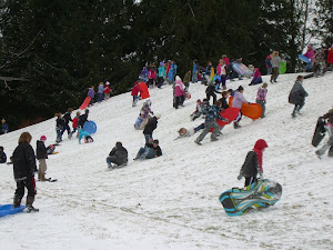 Everyone Had a Wonderful Time Sliding Down the Hill!