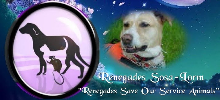 RENEGADES SAVE OUR SERVICE ANIMALS FOUNDATION (Renegades Sosa-Lorm)