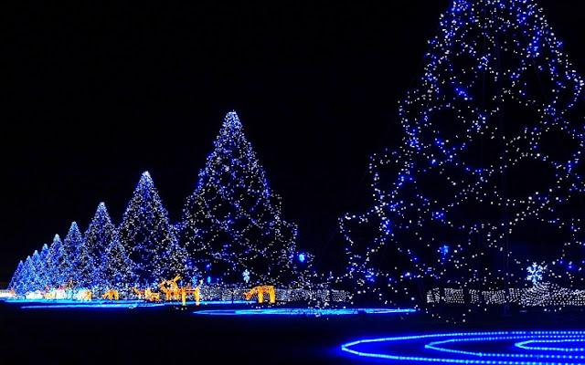 ~~Latest~~ Christmas Lights | Christmas Tree Lights | Christmas Lights Decoration