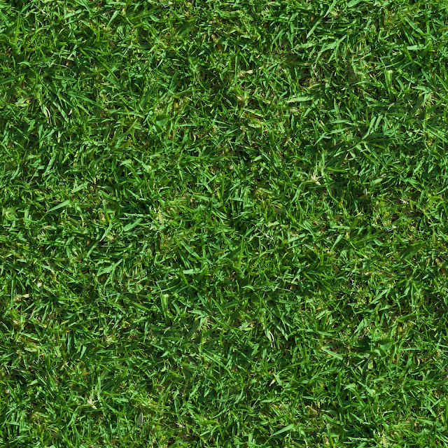 Green lush grass seamless texture