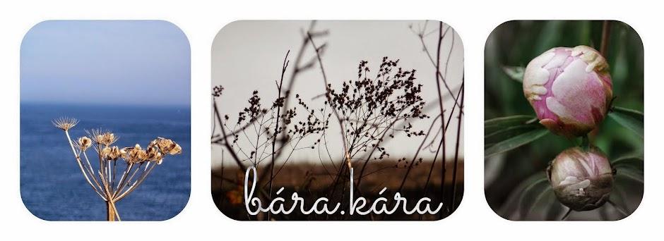 bára.kára