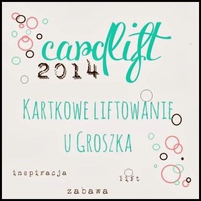 http://groszeknawrzosowisku.blogspot.ie/2014/03/cardlift-2014-karola-witczak.html