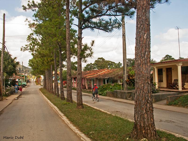 Une rue au coeur de Viñales