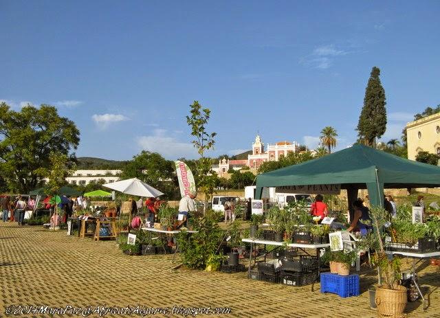 Mediterranean Garden Fair 1