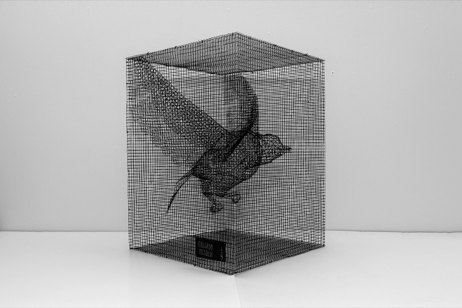 Italian scenographer and sculptor Edoardo Tresoldi, creates amazing hand-made sculpture from metallic wire mesh, transforming a mundane industrial material into delicately crafted three-dimensional figures. Edoardo turns this transparent material into pieces that offer a moment of memory and grasp the relationship of the body in space.