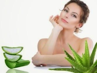 5 Manfaat Lidah Buaya Untuk Kecantikan Kulit