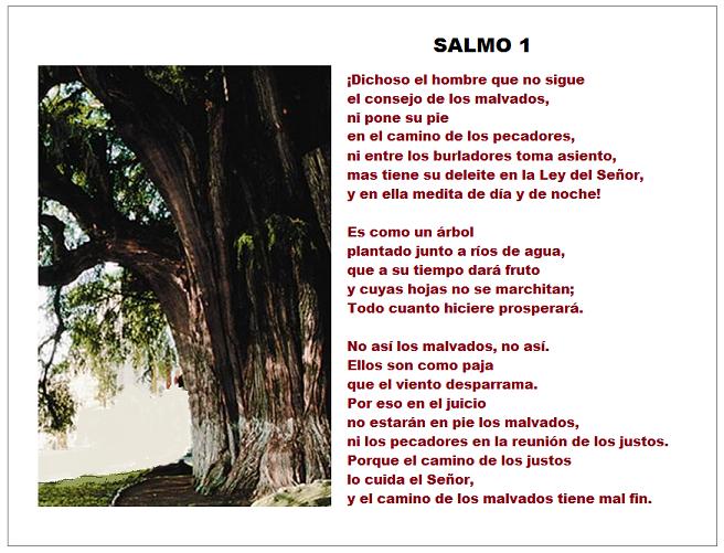 Salmos Del Matrimonio Catolico : Catolicidad salmo