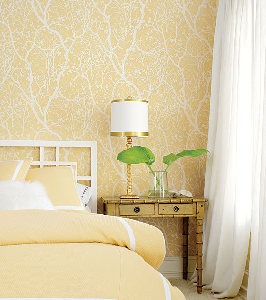 Librarian tells all peachy keen paint for a light and for Bright bedroom wallpaper