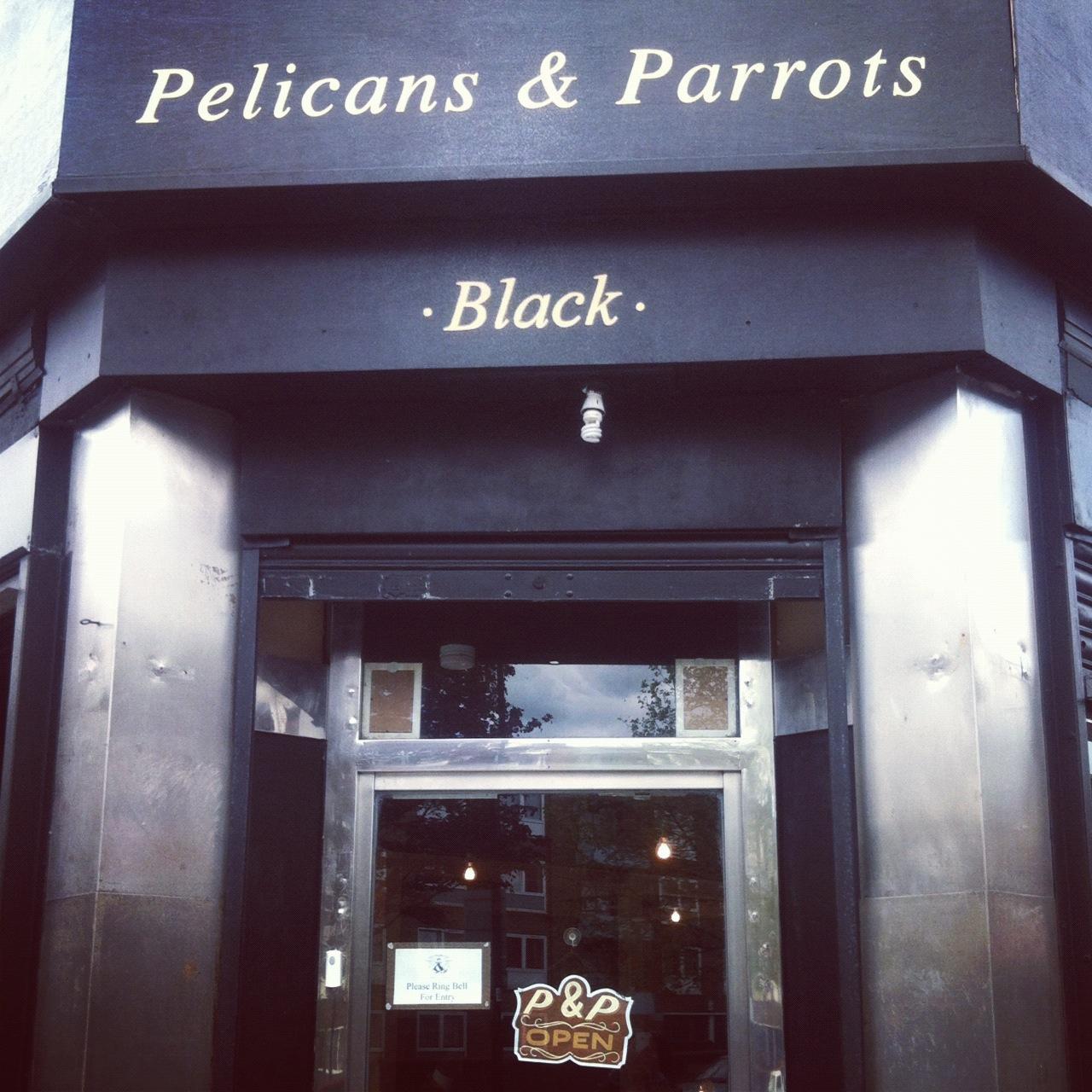 Boutique Feature: Pelicans & Parrots