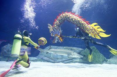 Фото СИНЬХУА\Укринформ: дракон в аквариуме