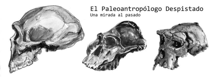 EL PALEOANTROPOLOGO DESPISTADO