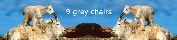 9 grey chairs