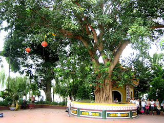 Tran Quoc pagoda- the oldest pagoda in Hanoi