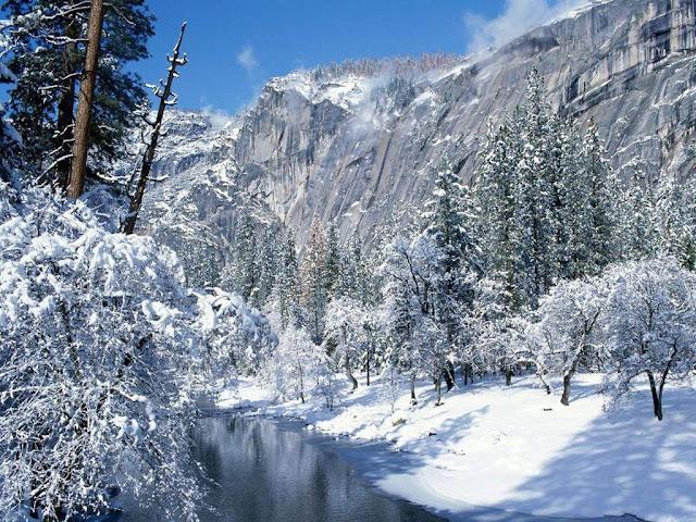 http://2.bp.blogspot.com/-XDGLoyM9Ng8/TeTeSh3AXbI/AAAAAAAAAzM/QzBKRwPsurM/s1600/cool+nature_wallpapers_Pictures.jpg