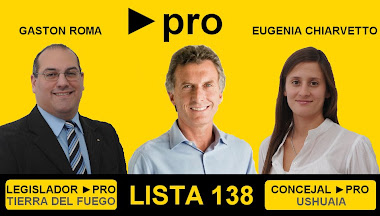 Vota PRO - Lista 138 - Vota Proyectos